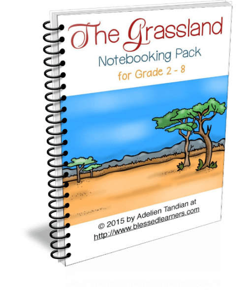 Put your Grassland Exploration into precious documents to make the exploration more engaging and to ease you work with Grassland Notebooking Pack.